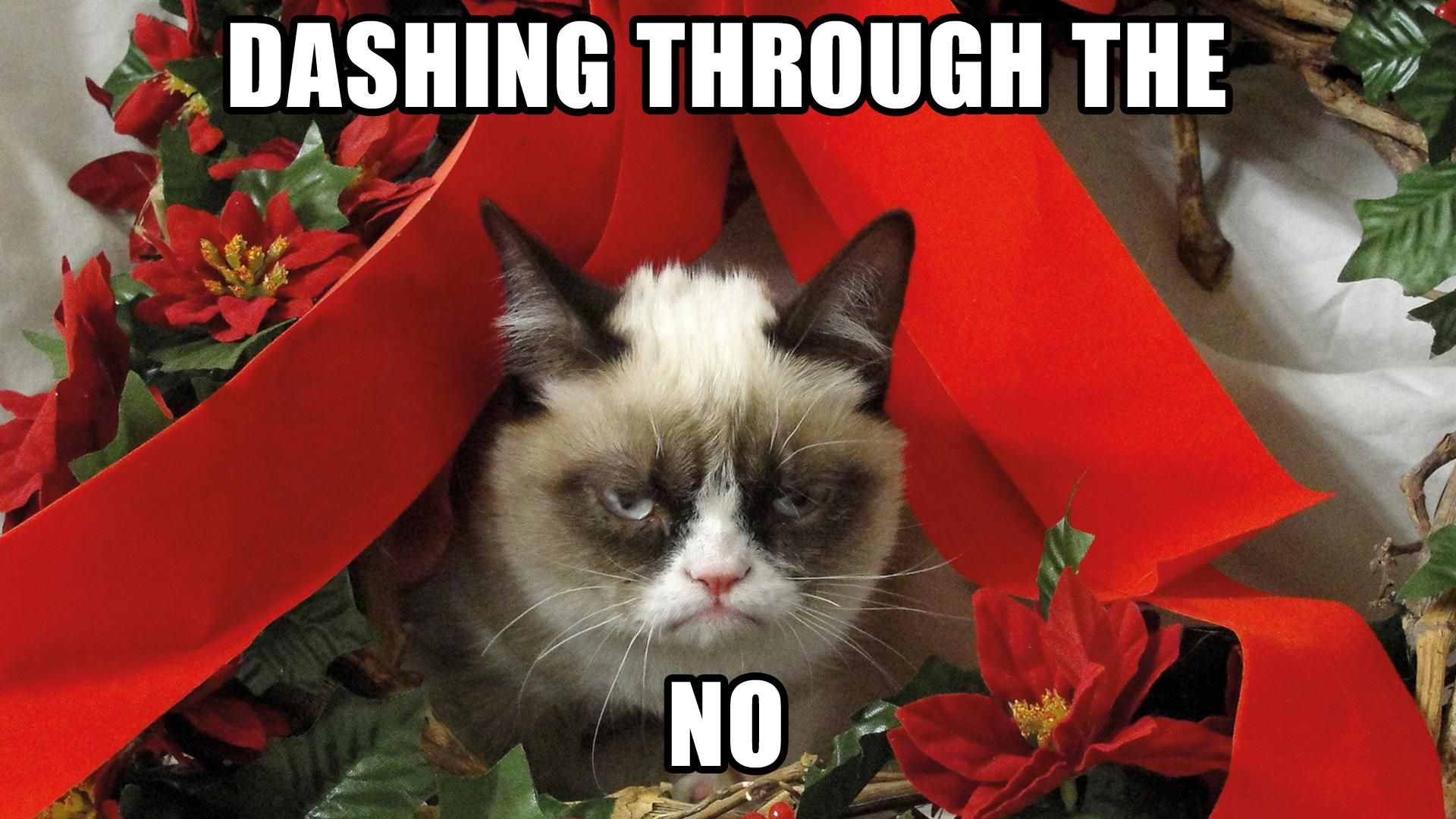 b1dda5119e6e1601dca114af0236209d 15 christmas memes that prove it's the worst holiday thetalko