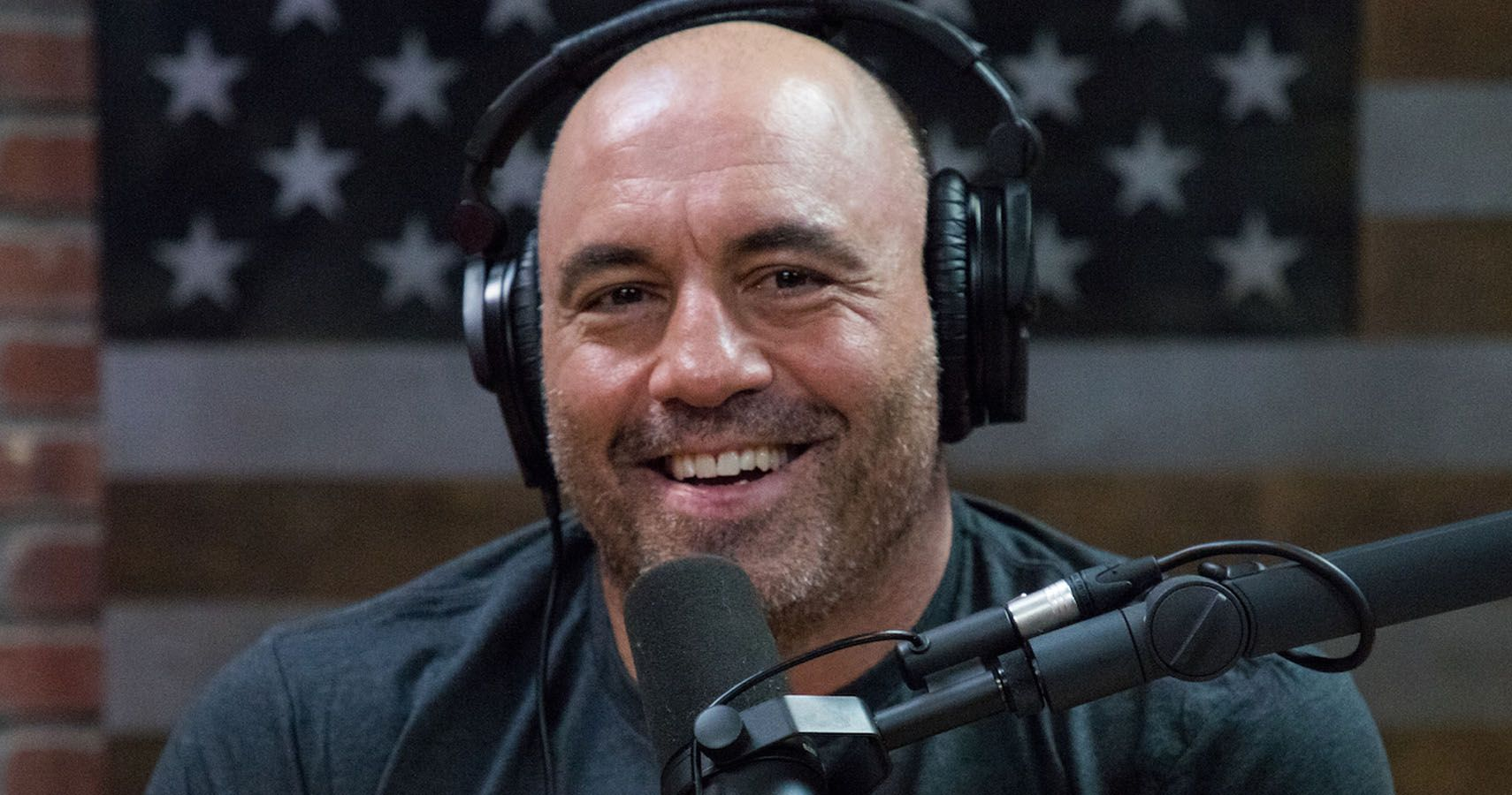 Joe Rogan: 10 Facts You Didn't Know About Him | TheTalko